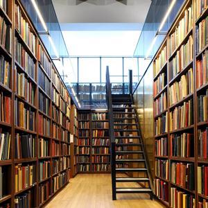 Библиотеки Большого Козино