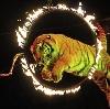 Цирки в Большом Козино