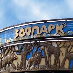 Зоопарки Большого Козино